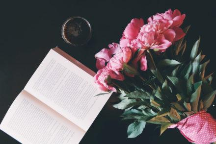 Ich schreibe ein Buch – www.vanilla-mind.de