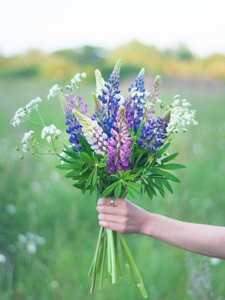 Sommer! Tolles Wetter – aber überall Menschen, Menschen, Menschen. Falls du lieber allein bist: hier sind 25 tolle Aktivitäten, die du solo genießen kannst und eine kostenlose Summer Bucket List zum Download. #stillundstark #vanillamind