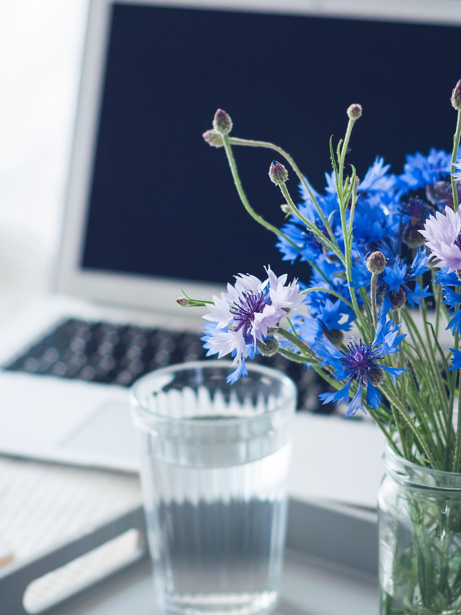 Der Sommer ist da und das Arbeiten im Büro schlaucht dich komplett? Mit diesen 9 Tipps bleibst du fit, gesund und konzentriert trotz Hitze. #Tipps #Arbeit #Beruf #Sommer #Hitze #Abkühlung #Entspannung #Fokus #Konzentration
