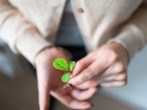 Die Bedeutung von Motivation als Antrieb für unsere Ziele wird häufig überschätzt. Die Macht von kleinen Gewohnheiten hingegen wird unterschätzt. In dieser Episode erfährst du, wie du kraftvolle Rituale für deine Ziele entwickelst und wie du deine Wünsche und Träume auch dann umsetzen kannst, wenn Gegenwind kommt oder die Motivation nachlässt.