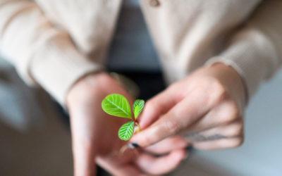 Die Macht kleiner Gewohnheiten: darum ist Motivation überbewertet
